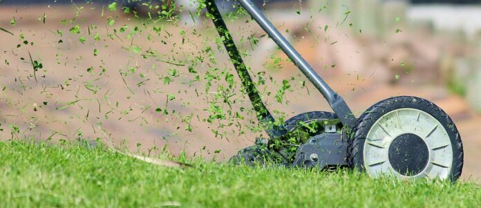 The Best Lawn Mower Buying Guide in 2021