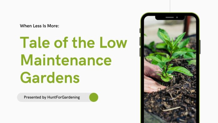 Tale of the Low Maintenance Gardens