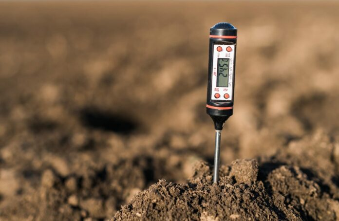The PH Soil Tester Buying Guide 2021