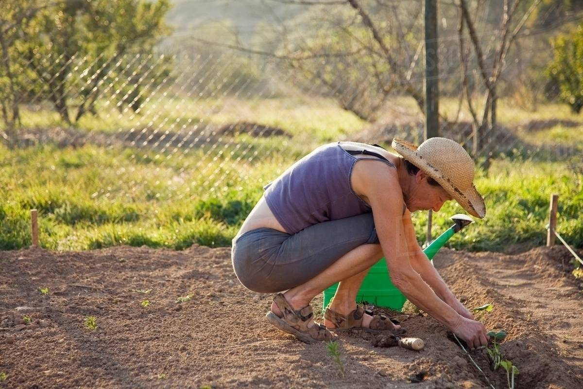 Holistic Gardening in Spain