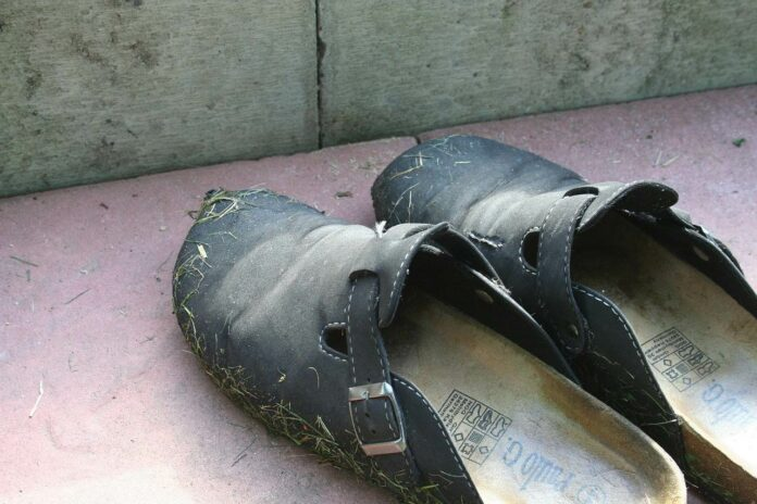 The Importance of Choosing the Right Footwear for Gardening