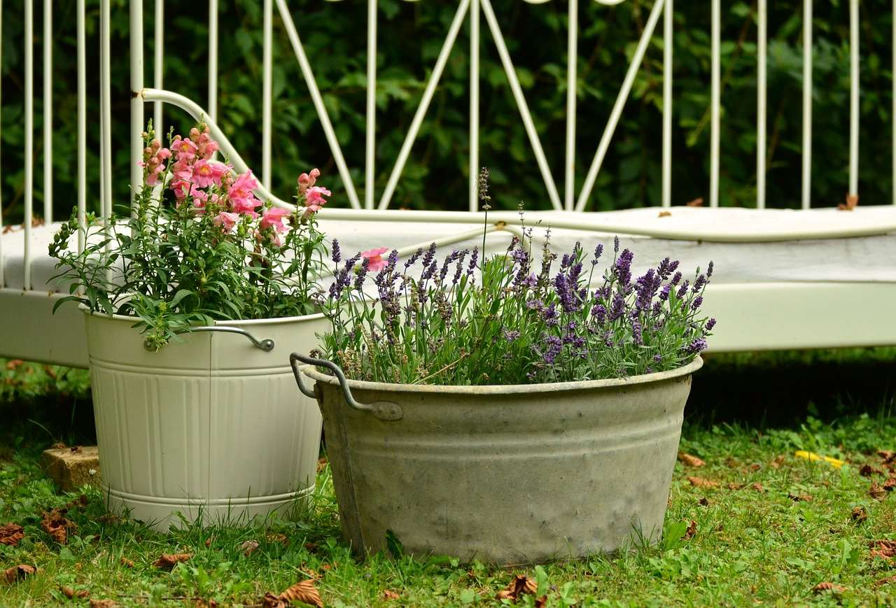 The Truth About Plant Containers and Pots