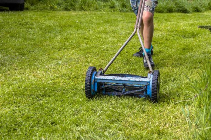 Reel Mower Benefits For Your Lawn