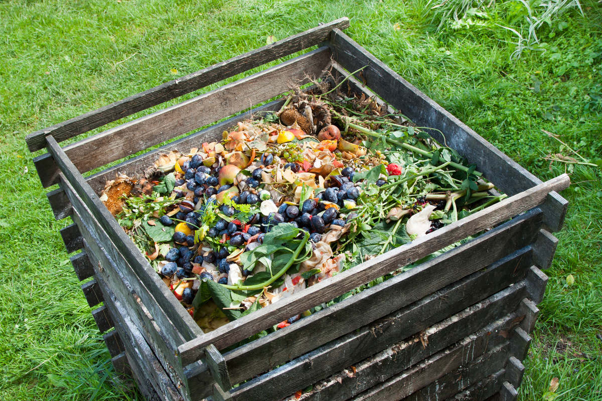Garden Compost - What Are The Different Types of Garden Compost?