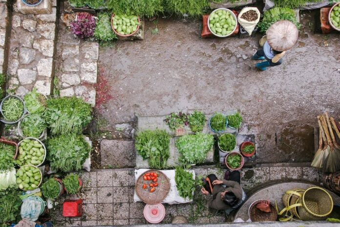 Organic Gardening - What Changes Can I Make to My Garden to Be More Natural?