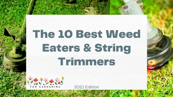 The 10 Best Weed Eaters & String Trimmers