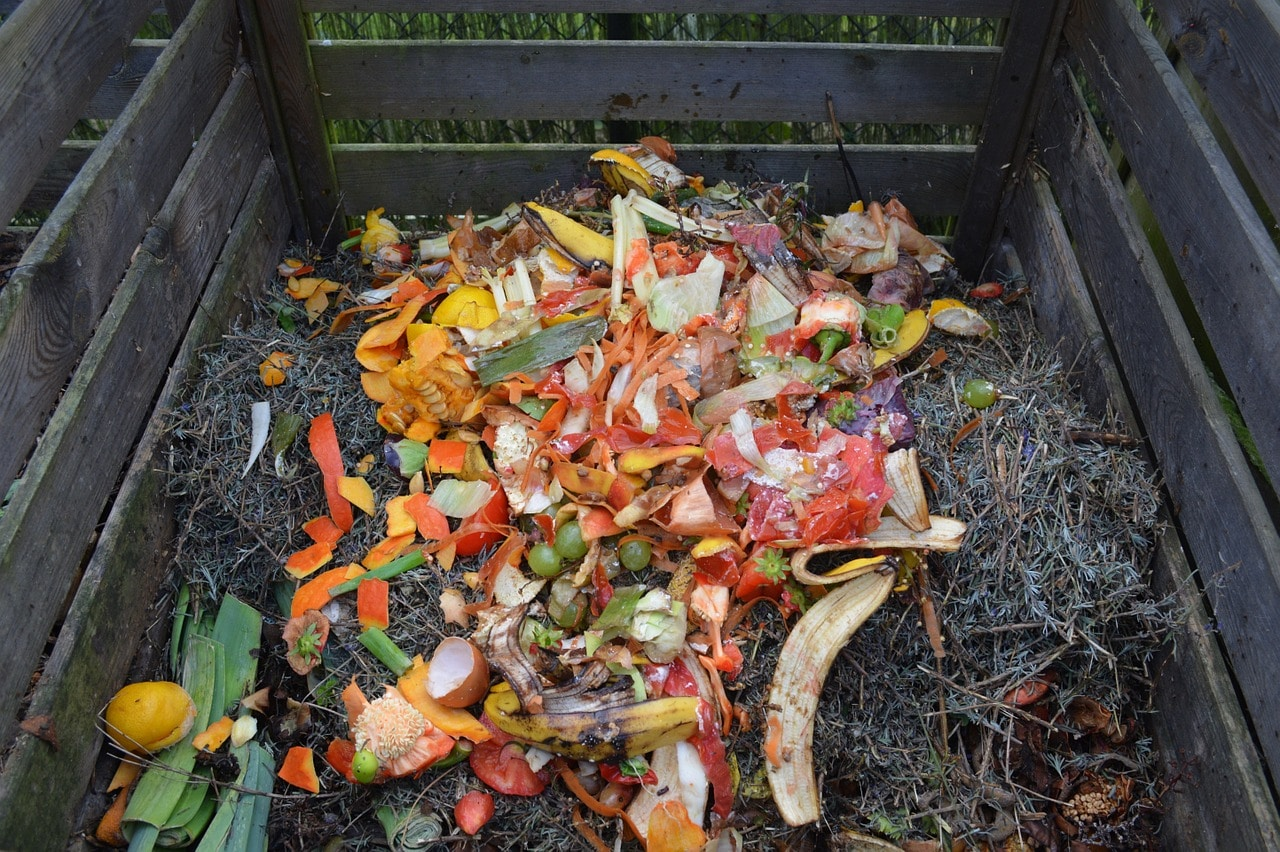 How to make compost and how to do it right