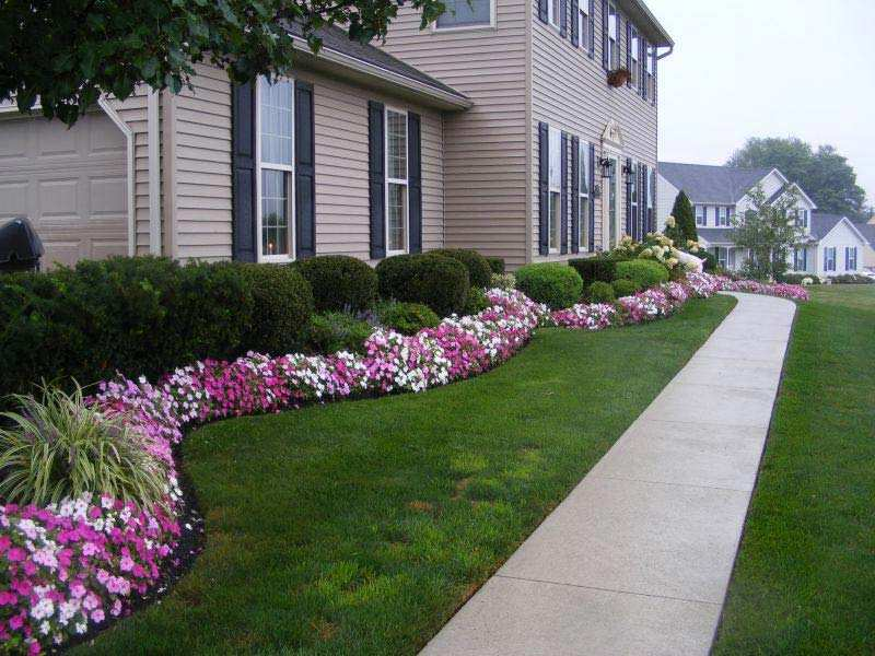 How To Use Landscape Plants To Design A Beautiful Yard