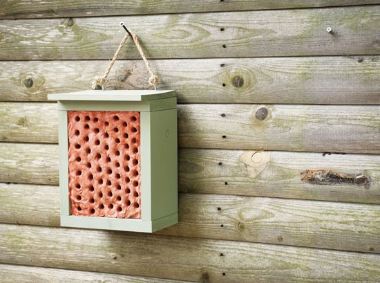 Clay and Wood Block Homes (Attract solitary Bees)