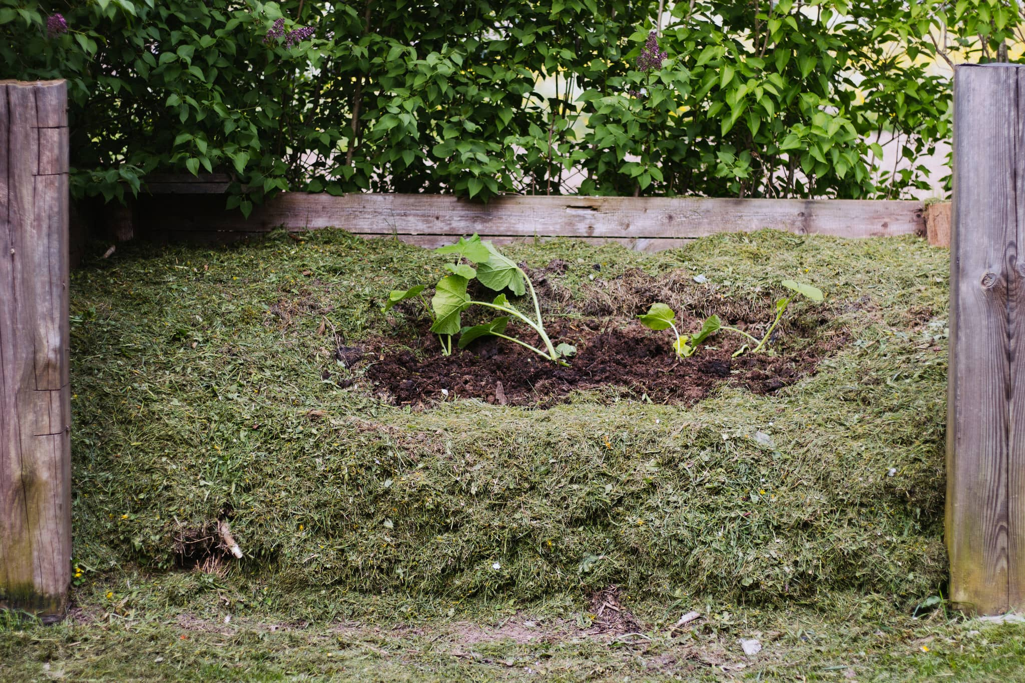 Compost for leaves and grass