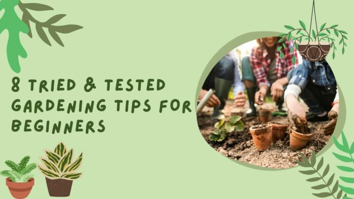 8 Tried & Tested Gardening Tips for Beginners