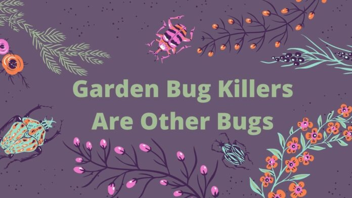 Garden Bug Killers Are Other Bugs