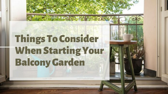 Things To Consider When Starting Your Balcony Garden