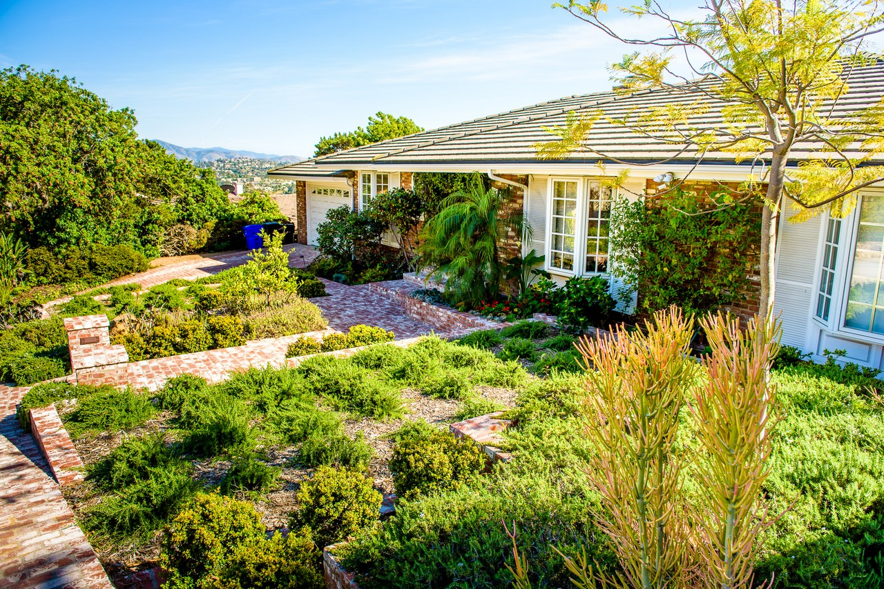 Drought-Tolerant Landscaping: Water-Efficiency Redefined