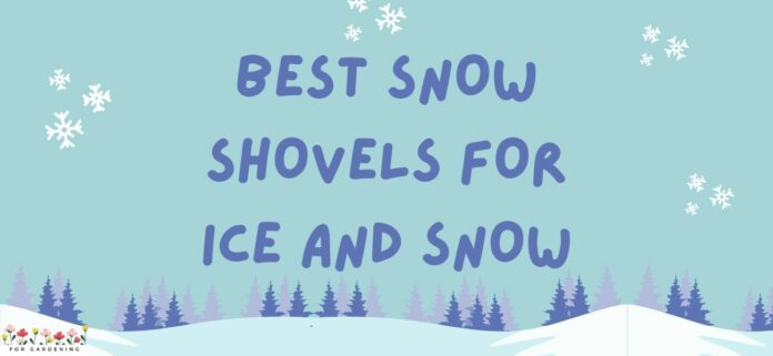 Best Snow Shovels For Ice and Snow