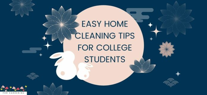Easy Home Cleaning Tips For College Students