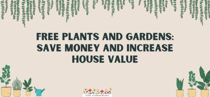 Free Plants and Gardens Save Money and Increase House Value