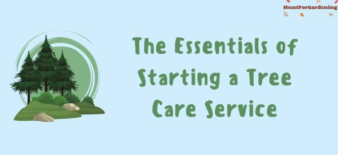 The Essentials of Starting a Tree Care Service