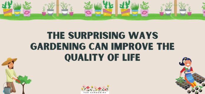 The Surprising Ways Gardening Can Improve the Quality of Life