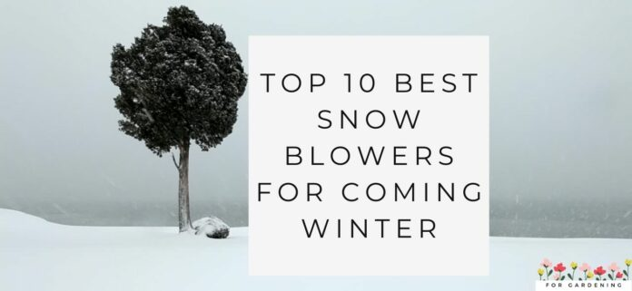 Top 10 Best Snow Blowers For Coming Winter