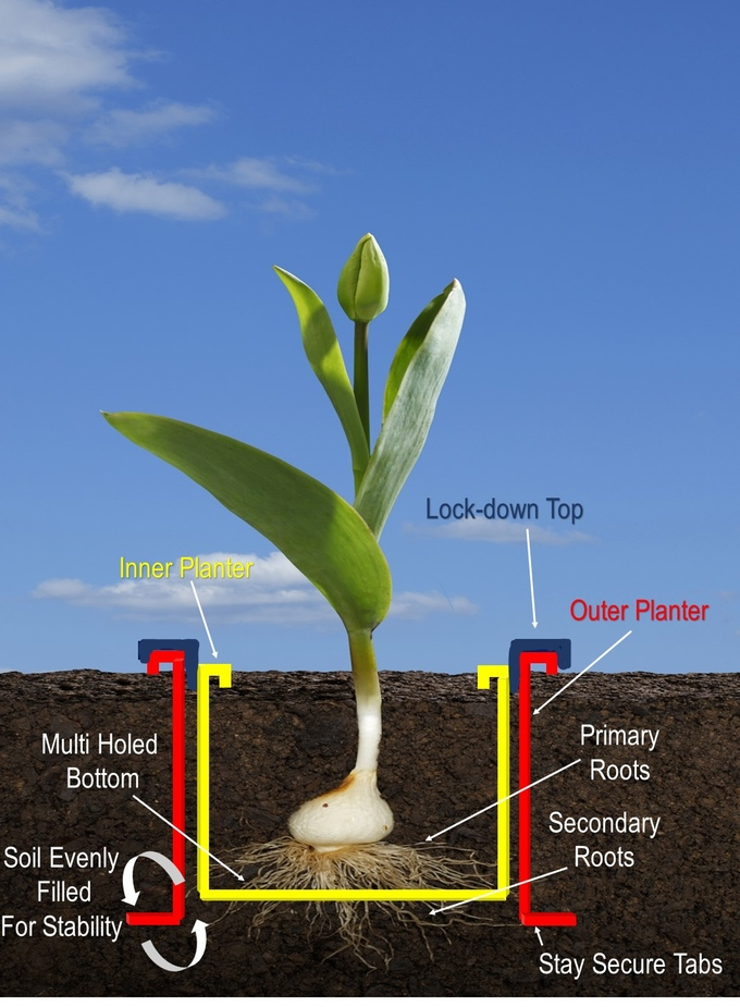 The outer planter with an open bottom allows secondary roots to freely grow out from the holes in the bottom of the inner planter.